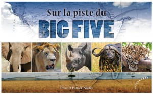 sur-la-piste-du-big-five