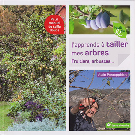 Blog archive eipa confrontations j apprends tailler mes arbres fruitiers arbustes - Quand tailler arbre fruitier ...