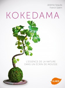 kokedama-art-vegetal-japonais