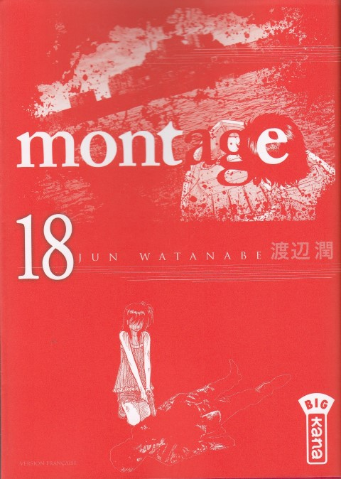 montage-tome-18