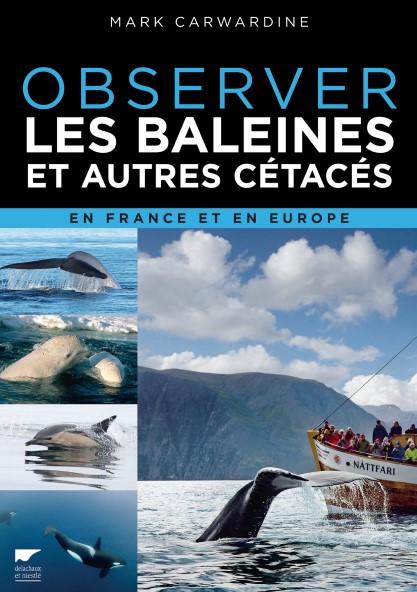 observer-les-baleines-et-autres-cetaces-en-france-et-en-europe