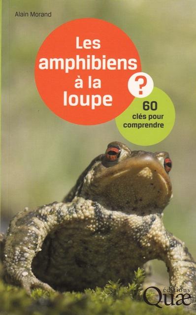 les-amphibiens-a-la-loupe-60-cles-pour-comprendre