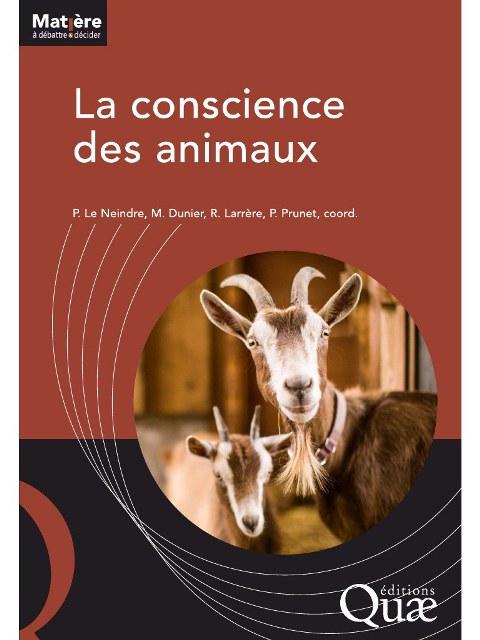 la-conscience-des-animaux