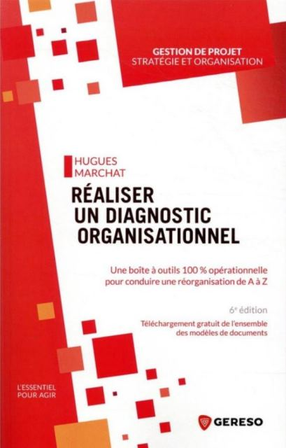 realiser-un-diagnostic-organisationnel